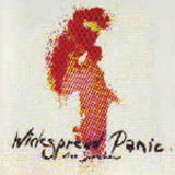 Free Somehow - Widespread Panic