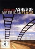 Ashes Of American Flags - WILCO