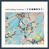 wild nothing