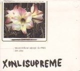 Xinlisupreme