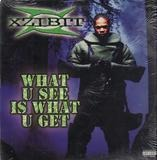 What U See Is What U Get - Xzibit