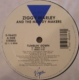 Tumblin' Down - Ziggy Marley And The Melody Makers