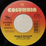 Charlie Robison