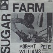 Robert Pete Williams