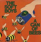The Soft Boys