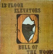 LP - 13th Floor Elevators - Bull Of The Woods