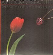 LP - A Flock Of Seagulls - The Story Of A Young Heart