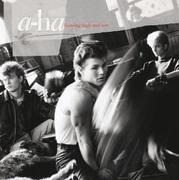 Double CD - a-ha - Hunting High And Low