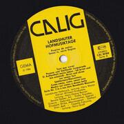 LP - Landshuter Hofmusik / Adrian Willaert Ensemble a.o. - Landshuter Hofmusiktage (Europäische Musik Aus Gotik, Renaissance Und Frühbarock) - Gatefold