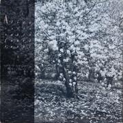 LP - Alice - Mélodie Passagère