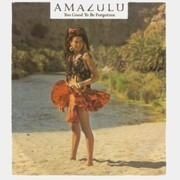7inch Vinyl Single - Amazulu - Too Good To Be Forgotten