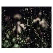 LP - Anneli Drecker - Rocks & Straws
