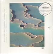 Double LP & MP3 - Arp - Zebra - +download