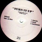12'' - Ashanti - Touch My Body/Turn It Up Feat. Ja Rule