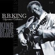 Double LP - B.B. King - Signature Collection