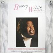 Double LP - Barry White - Satin & Söul