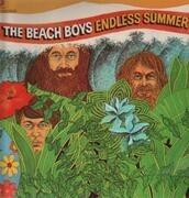 Double LP - The Beach Boys - Endless Summer