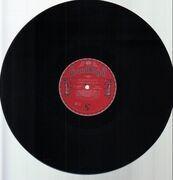 Double LP - Beastie Boys - Check Your Head