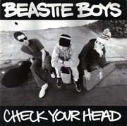 Double LP - Beastie Boys - Check Your Head