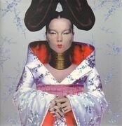 LP - Björk - Homogenic