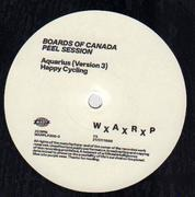 12inch Vinyl Single - Boards Of Canada - Peel Session TX 21/07/98
