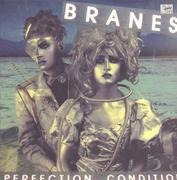 LP - Branes - Perfection Condition - Limited