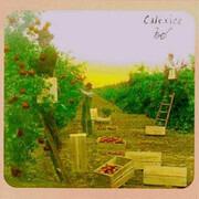 CD - Calexico - Spoke