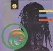 12inch Vinyl Single - Caron Wheeler - Livin' In The Light