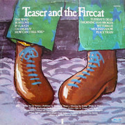 LP - Cat Stevens - Teaser And The Firecat - Pink Rim Island