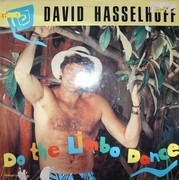 12inch Vinyl Single - David Hasselhoff - Do The Limbo Dance