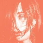 Double LP - Deerhunter - Microcastle / Weird Era Continued
