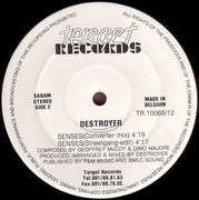 12inch Vinyl Single - Destroyer - Senses