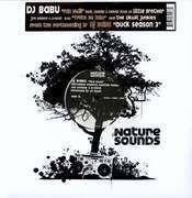 12'' - DJ Babu - Fan Mail (feat. Little Brother)