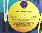 12'' - Echo & The Bunnymen - Bedbugs And Ballyhoo