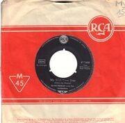 7inch Vinyl Single - Elvis Presley - A Big Hunk O' Love - Original German, Company Sleeve