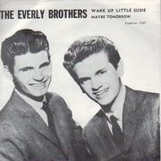 7inch Vinyl Single - Everly Brothers - Wake Up Little Susie - Original US. Picture Sleeve