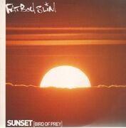 12inch Vinyl Single - Fatboy Slim - Sunset (Bird Of Prey)