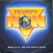 7inch Vinyl Single - Frumpy - What It Is