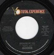 7inch Vinyl Single - Goodie - Because Of You