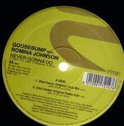 2 x 12inch Vinyl Single - Goosebump - Never Gonna Do