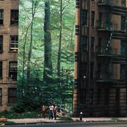LP - Go!Zilla - Modern Jungle's Prisoners - Signed by Thomas Hoepker