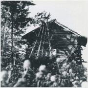 7inch Vinyl Single - Hexvessel - Vainolainen - Brown Rosewood Marbled