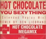12inch Vinyl Single - Hot Chocolate - You Sexy Thing
