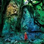 CD - JACCO GARDNER - CABINET OF CURIOSITIES
