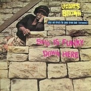 LP - James Brown Plays And Directs The James Brown Band - Sho Is Funky Down Here
