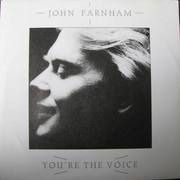 7inch Vinyl Single - John Farnham - You're The Voice