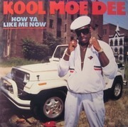 LP - Kool Moe Dee - How Ya Like Me Now
