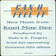 12inch Vinyl Single - Kool Moe Dee - Can U Feel It
