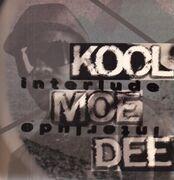 LP - Kool Moe Dee - Interlude