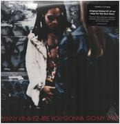Double LP - Lenny Kravitz - Are You Gonna Go My Way - 180g